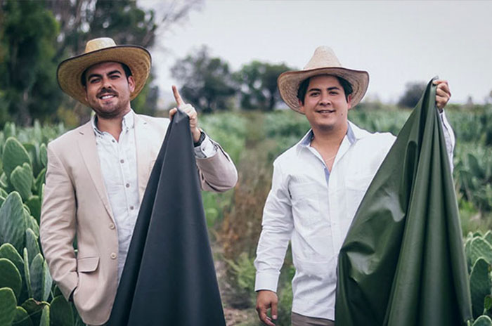 These Guys Found A Way To Make Leather Out Of Cactus Leaves To Help Save The Environment