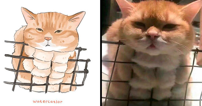 30 Of The Funniest Internet-Famous Cat Pics Get 'Watercolorized' By Amelia Rizky (New Pics)