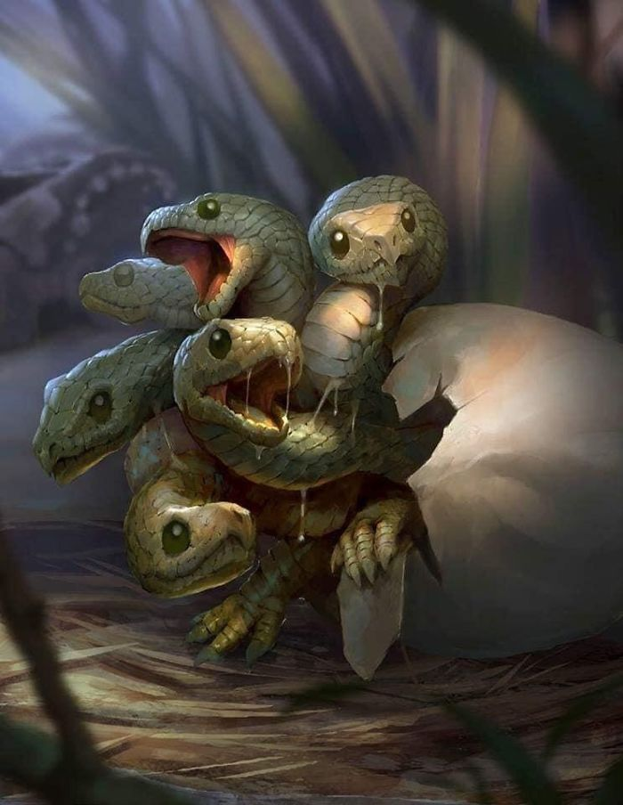 Hidra recién salida del cascarón