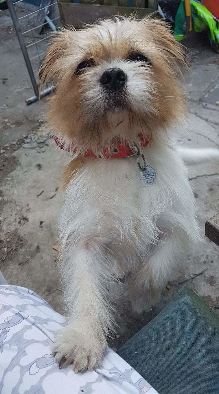 Olly, My Baby Boy 😊