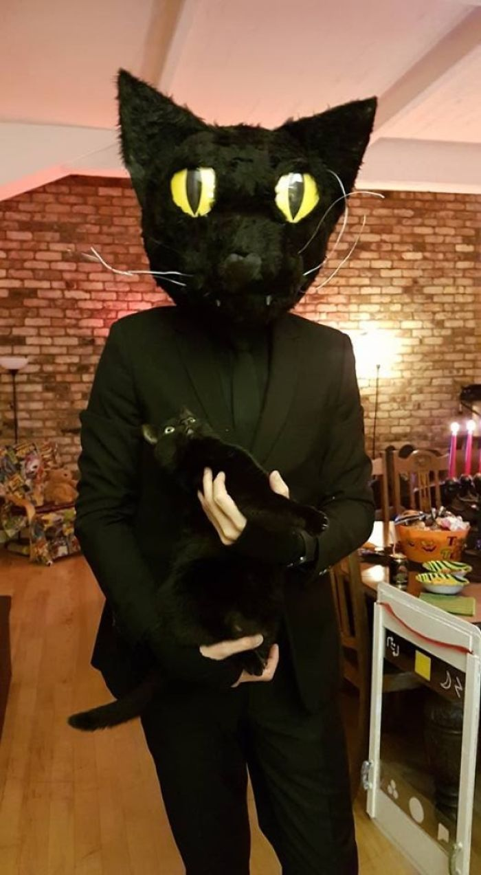 My Buddy Dressed Up As His Cat For Halloween. Look At The Cats Face