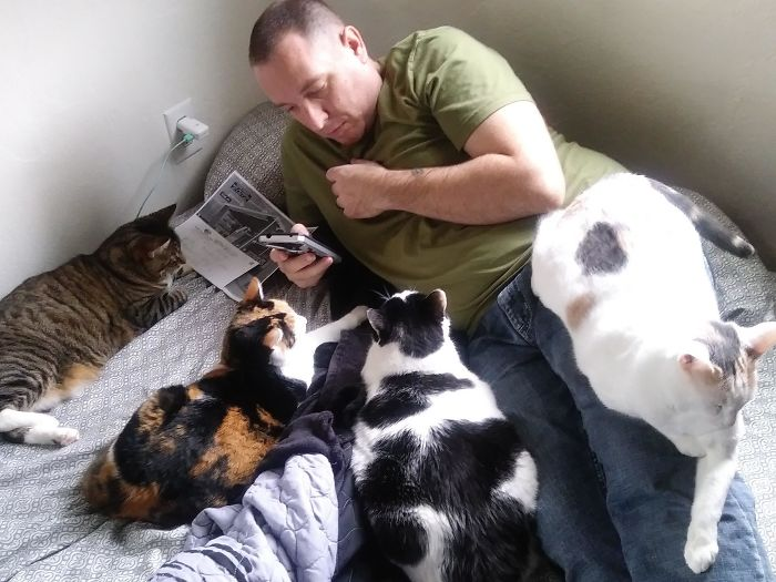 Hubs Was Never A Cat Person. Now He Tells Me How They Individually Like To Be Pet, And They All Behave And Don't Fight When Sitting By Daddy. I Don't Know Who Trained Who