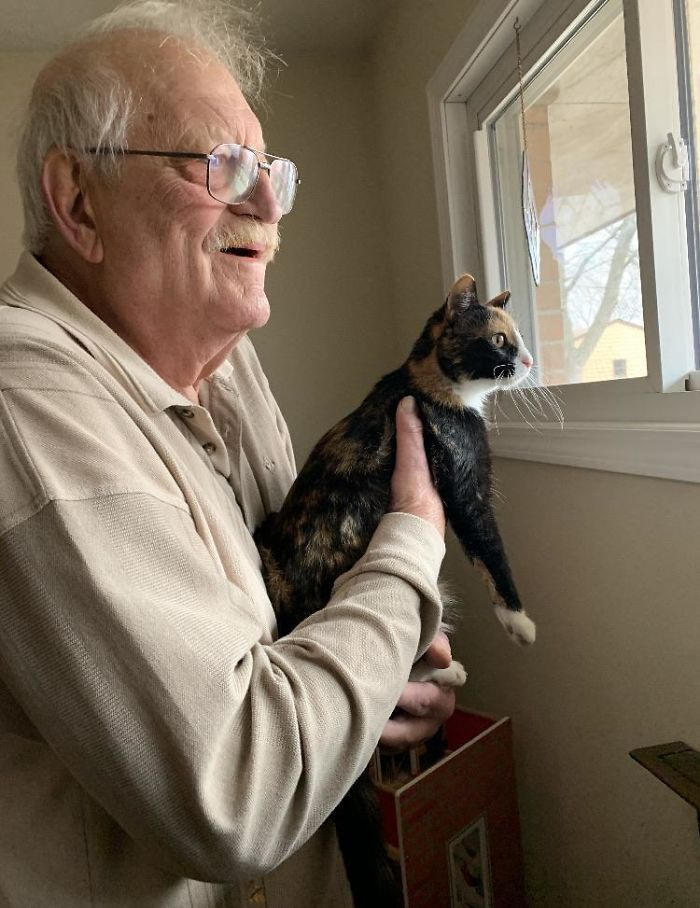 My Grumpy Dad When He Holds Up The Cat So She Can Look Out The Window