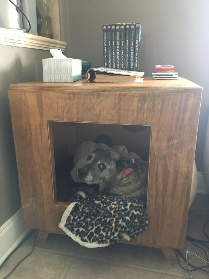 My Dad Claims He Doesn't Love Our Dog, But He Built This End Table With A Little Hut For Her. If That's Not Love, I Don't Know What Is