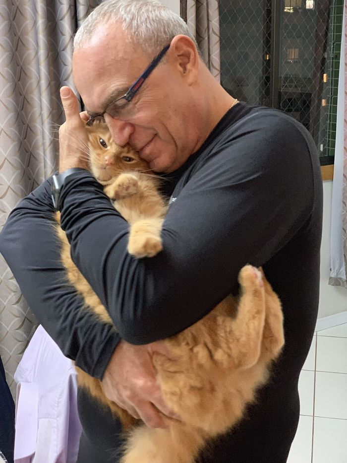 My Father, Who Used To Hate Cats, And Linus, My Cat
