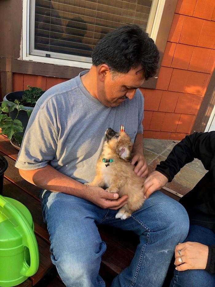 Mi padre no quería mascotas, hasta que adoptamos a este a sus espaldas