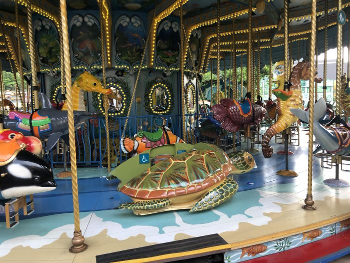 This Carousel In Hong Kong Has A Sea Turtle Mounted To The Floor For Physically Impaired Children