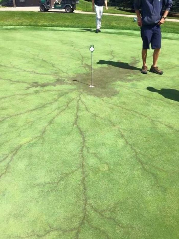 This Is What Happens When Lightning Strikes A Flag On A Golf Course