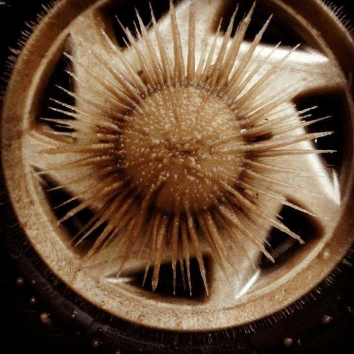 What Happens When Water Freezes On A Spinning Wheel