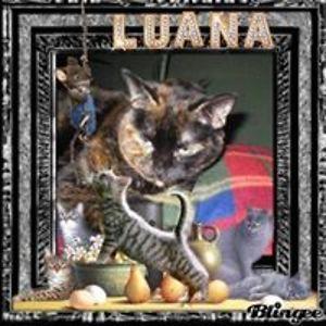 Luana Scott