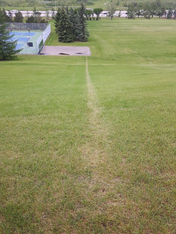 I Ran The Same Hill Sprint Enough Times Over Quarantine To Create My Own Path