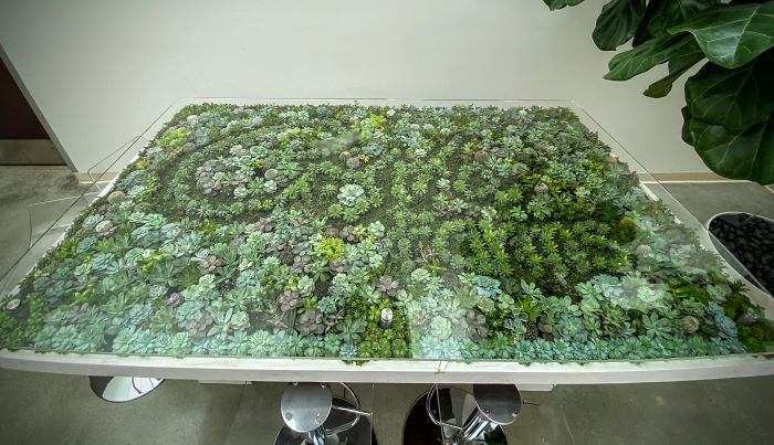 Succulent-Tables
