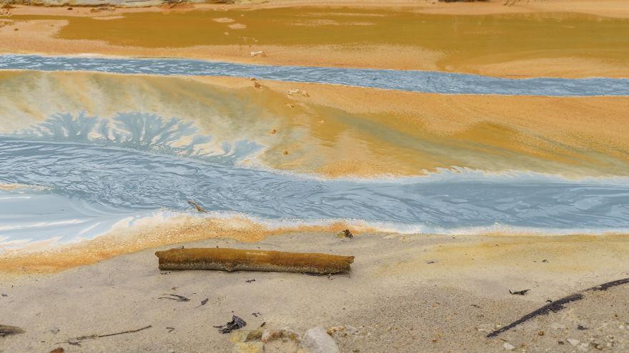 Toxic Rhein