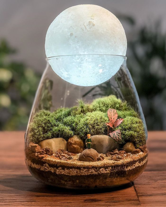 These Artists Make Little Ecosystems In Glass Containers (88 Pics)