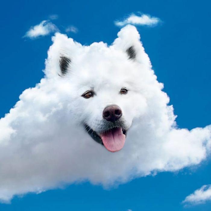 Cloud Boye