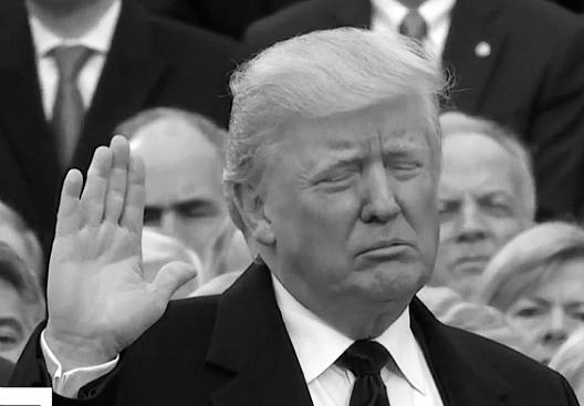 Trump-5f24212993e0a.jpg