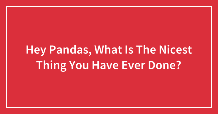 Hey Pandas, What Is The Nicest Thing You Have Ever Done? (Closed)