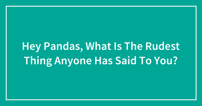Hey Pandas, What Is The Rudest Thing Anyone Has Said To You? (Ended)