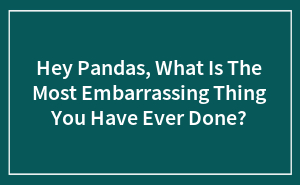 Hey Pandas, What Is The Most Embarrassing Thing You Have Ever Done?