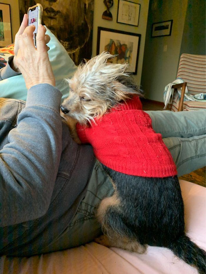 Loving Up To His Grandma - Huey Is His Name