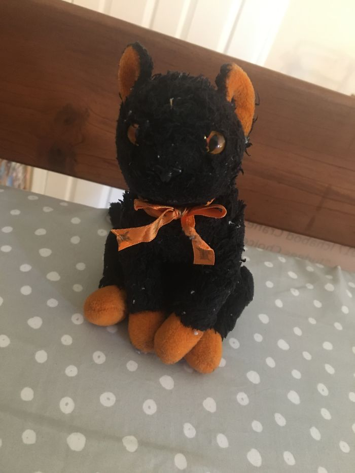 This Is Boo, He Was Given To Me By My Grandmother When I Was 6 Years Old, Her Soul Still Lives On With Him