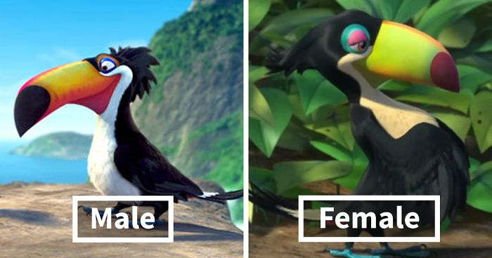 People Are Pointing Out How Animators Exaggerate Female Animal Characters And Give 14 Examples Bored Panda