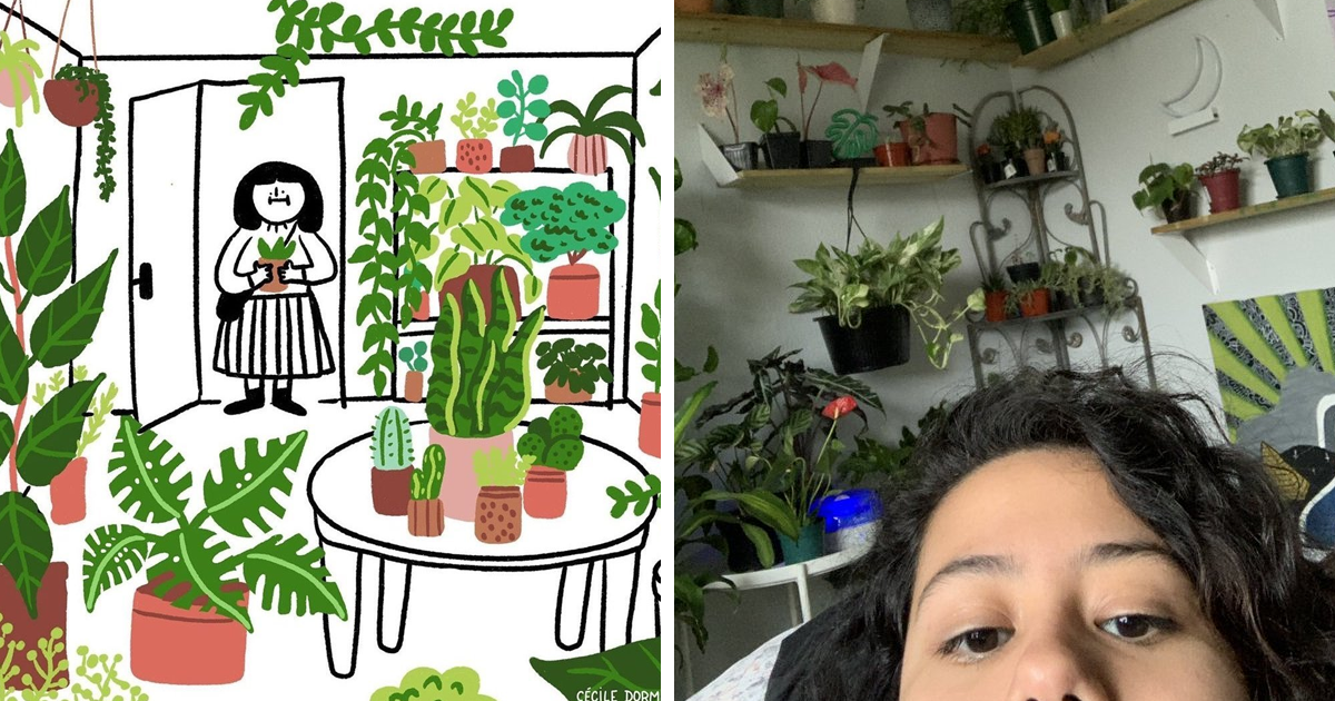 People Are Relating To An Illustration About Having Plants With Photos Of Their Green Friends (36 Pics)
