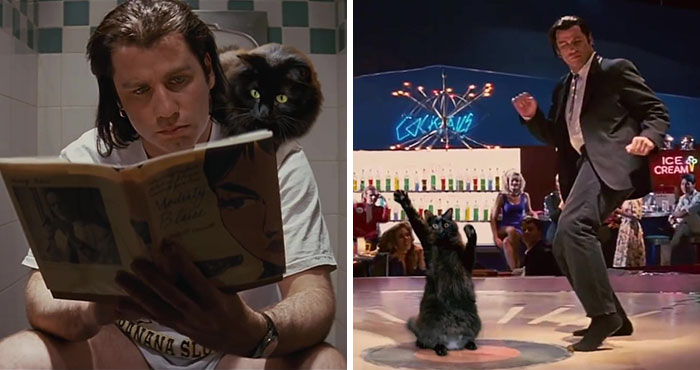 """Here's A Parody Of Tarantino's """"Pulp Fiction"""" With A Cat Starring In It"""