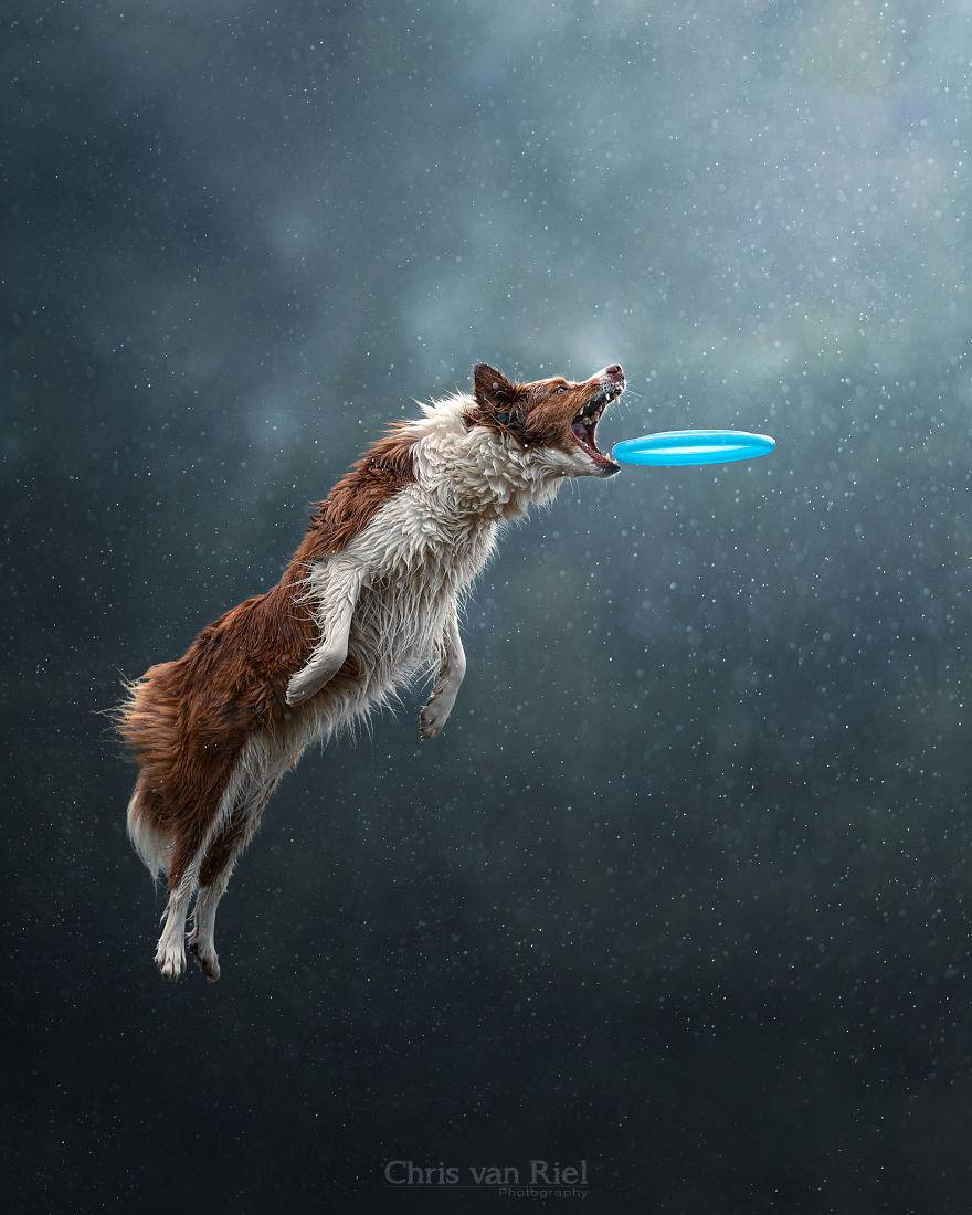 Flying Trough A Sky Full Of Bokeh