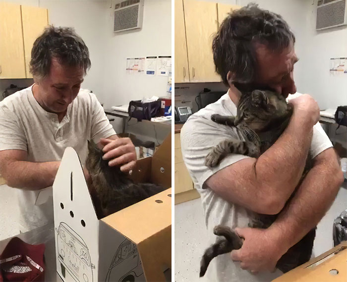 Man Gets Reunited With His 19-Year-Old Cat 7 Years After He Went Missing