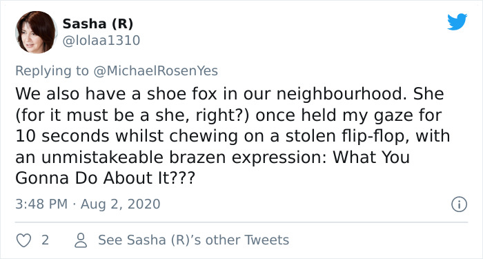 Fox From Berlin Gets Unmasked As A Crocs-Thief With A Collection Of Over 100 Stolen Shoes And People Find It Hilarious
