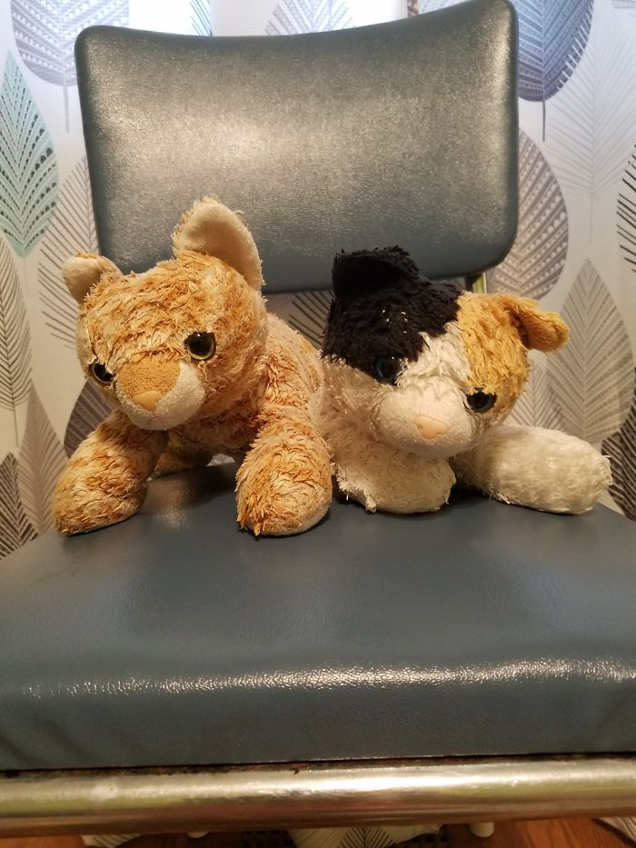 Meet Cuddly (Right) And Snuggly (Left)! Cuddle Was My Great Grandma's Who Had It Given To Her Bc She Had Alzheimer's And I Found Snuggly At A Garage Sale For 3 Dollars