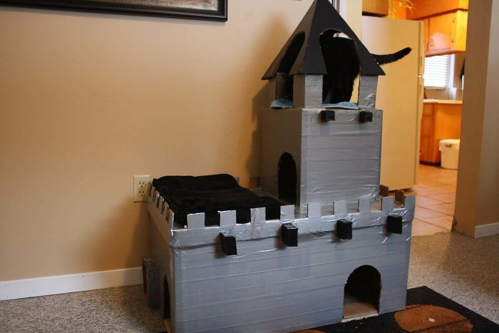 I Was Told You Guys Would Like The Catsle That I Built (X-Post From /R/Somethingimade)