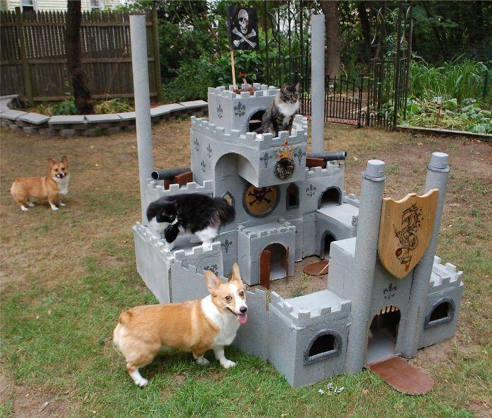 Corgi & Cat Castle (Aka Corgi Summer Fort)