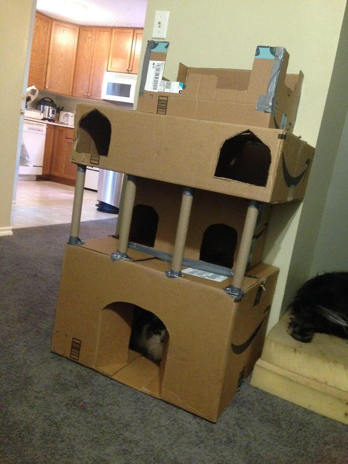 Amazon Christmas = Awesome Cat Castle