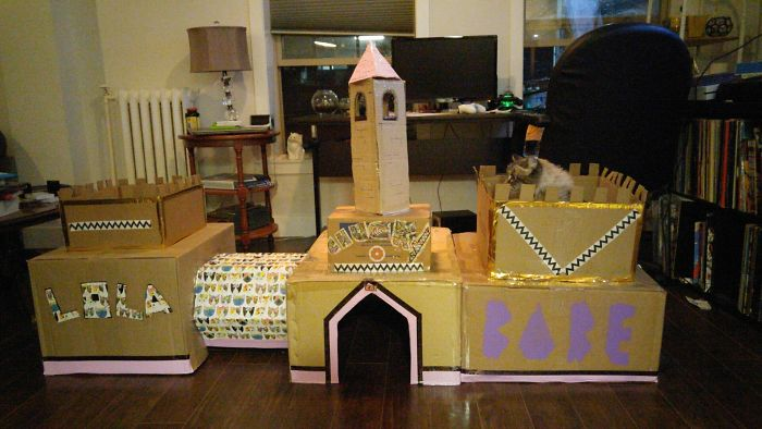 A True Cat Castle