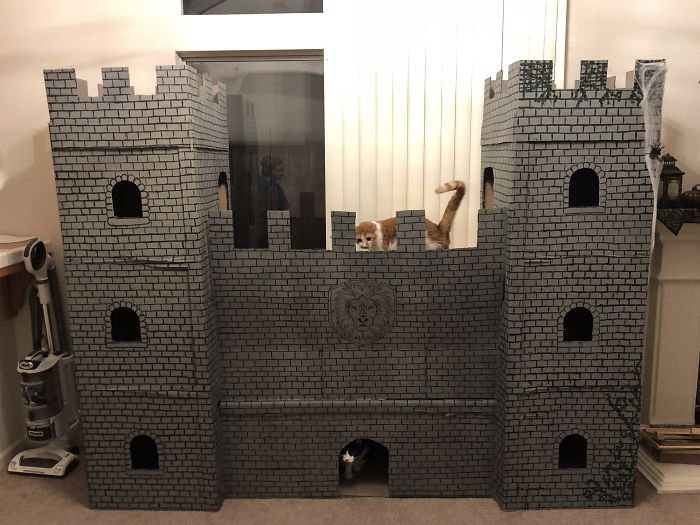 The Cat Castle Is Finished! A Lot Of Cardboard, Hot Glue, Tape, Paint And Time Went Into Making This
