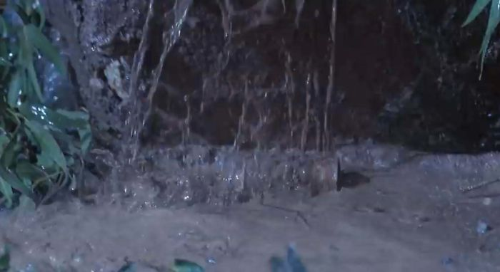 """In """"Jurassic Park"""" [1993], After Nedry Is Attacked By The Dilophosaur, The Barbasol Can Containing The Stolen Dinosaur Embryos Is Quickly Covered In Mud. In Paleontology, One Of The Recognized Ways That An Organism May Become Fossilized Is Through The Rapid Burial Of Its Remains"""