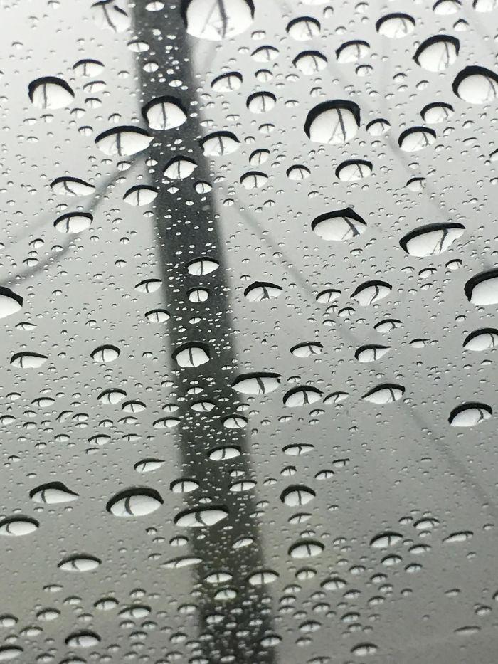 Water Droplets On My Window Look Like Cat Eyes.