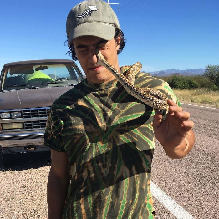 What Could Go Wrong If I Take A Picture With This Gopher Snake I Found In The Road