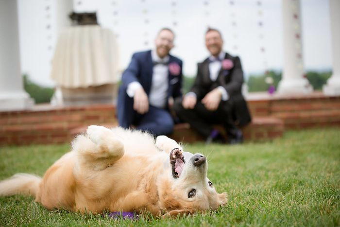 My Best 14-Year-Old Man Chance Stole The Show At My Wedding Last Year