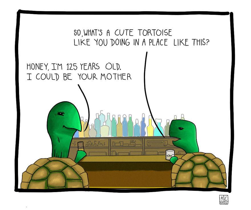 The Tortoise Date