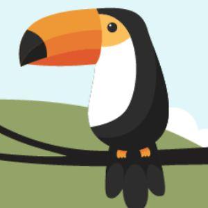 B-b-bird