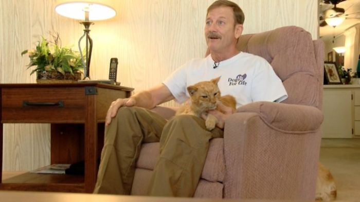 Este gato se perdió durante un huracán en 2004 y se reunió con su dueño tras 14 años