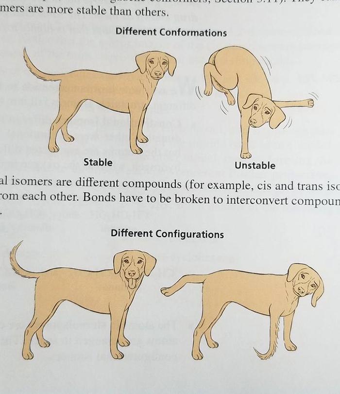Funny-Odd-Science-Diagrams