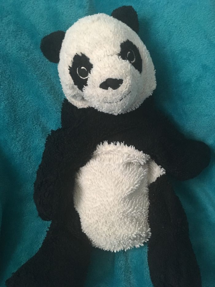Meet Panda. I've Had Her For Ages And Went Crazy When She Got Lost. Luckily I Found Her Again