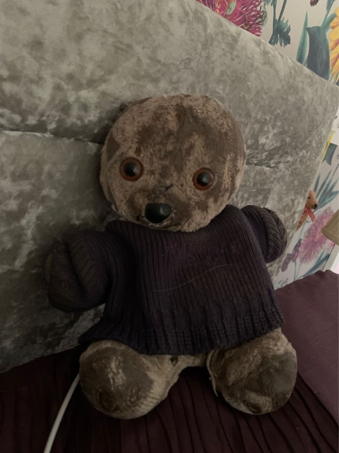 This Is Ted2 As Ted1 Was Eaten By A Swan. I'm 31 And I've Had Him Since I Was 2. I Love Him!