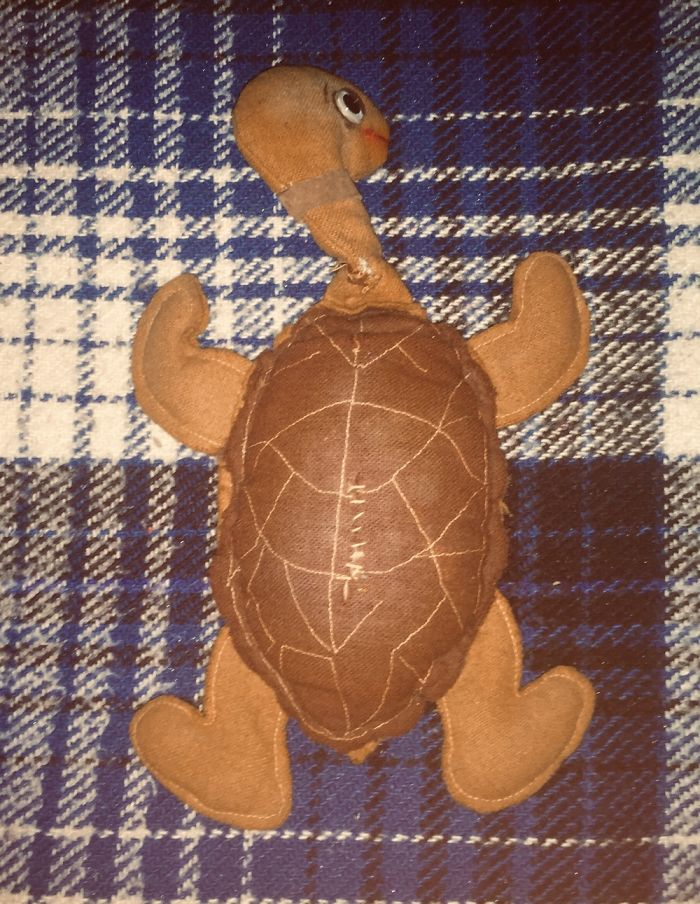 Terry, My Felt Turtle. Was Given To Me By My Sister Back In 1975