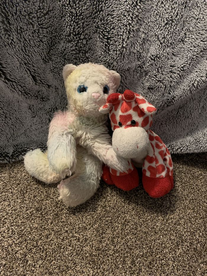 These Two Are Named Wolfie (Left) And Giraffe (Right). I Have Had Them Since Birth And Wolfie Used To Be Bright Rainbow Colored. He Was Named After The Cat From Barbie Princess And The Pauper. I Love Them And Sleep With Them Every Night!