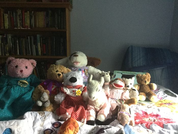 In Order From Front To Back: Sparkles, Joy, Susan, Lana, Chippy, Teddy, Rosalina, Melanie, Billy, James, And Daisy